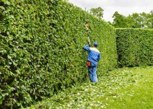 jardinier avec taille hais telescopique Le Loroux Bottereau